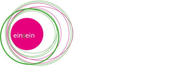 Print Design | Logo | einsein | Seminar, Ingolstadt | Printvorlage und Webversion | Konzeption, Design und Druckabwicklung